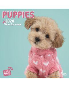 Jaarkalender 2020 Puppies Studio Pets