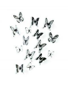 Umbra Wanddecoratie Vlinders Chrysalis - Zwart - Doorzichtig